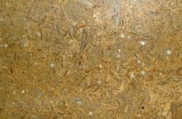 Mind-brown (leimstone)